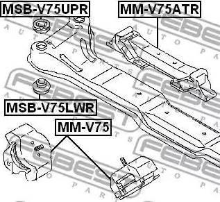 Febest MSB-V75LWR - Kinnitus,sillatala multiparts.ee