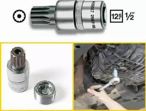 HAZET 2567-16 - Padrun,, õli väljalaskekruvi multiparts.ee
