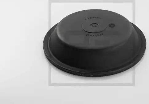 PE Automotive 076.405-10A - Membraan,vedrusilinder multiparts.ee